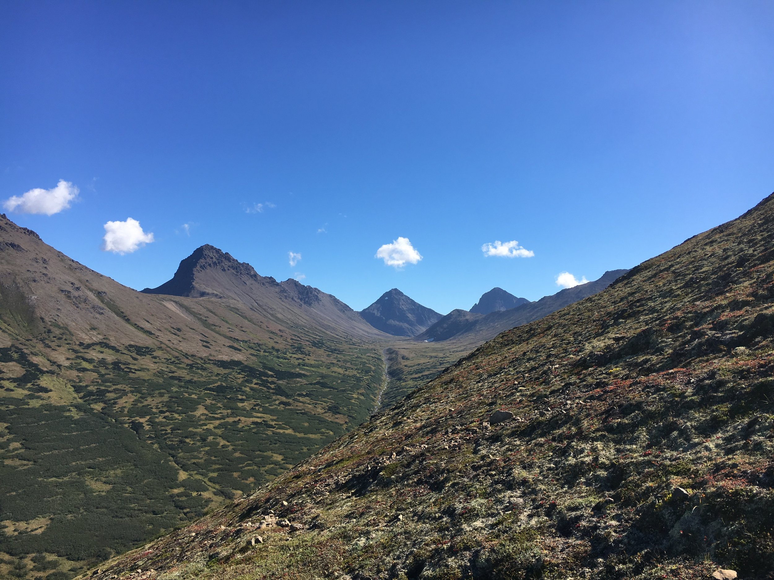 View of the Ptarmagin Peak and the Suicide Peaks from the trail. All on my need to hike list.