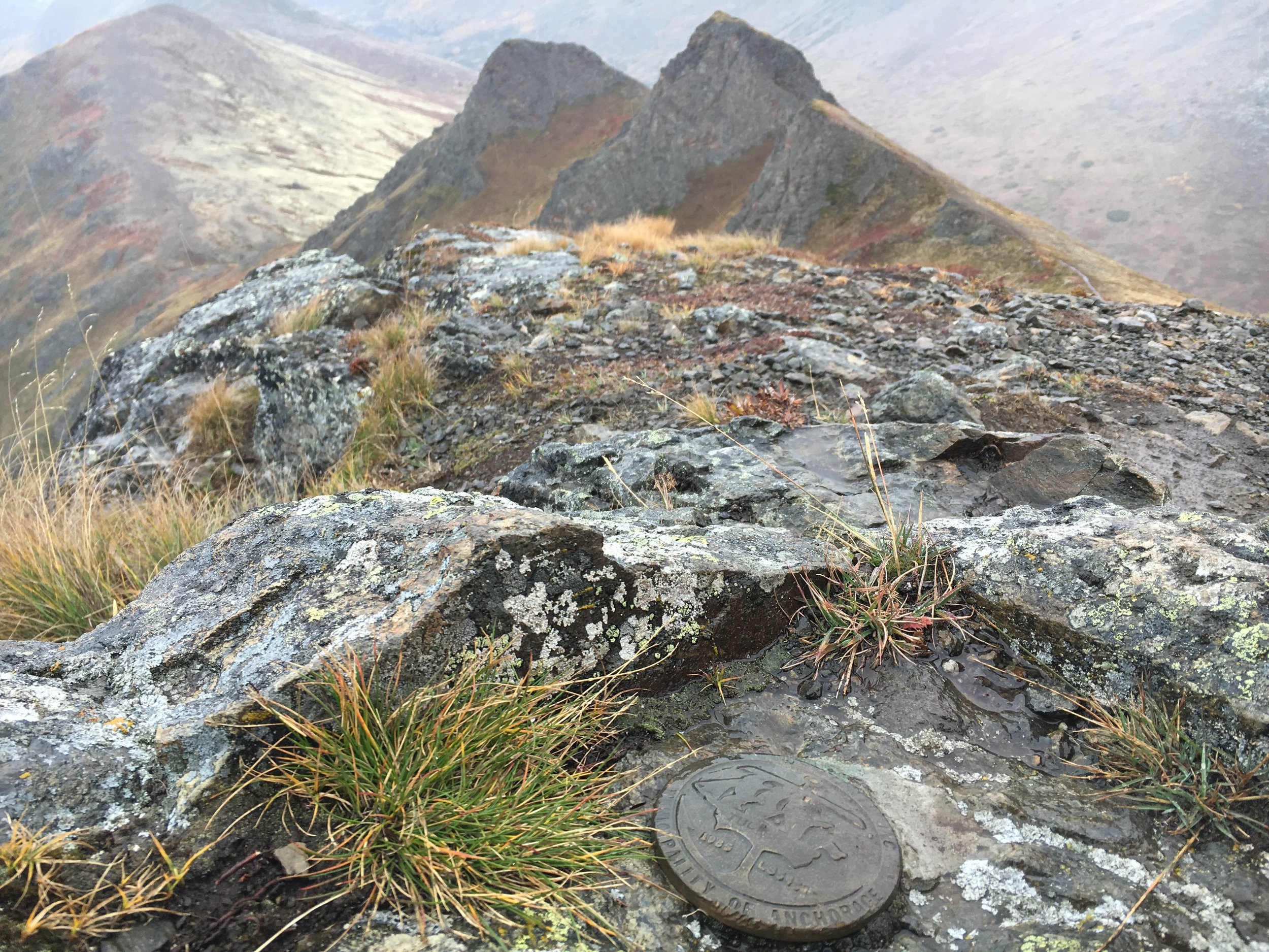 Survey marker on Mt. Tucker looking back toward the saddle