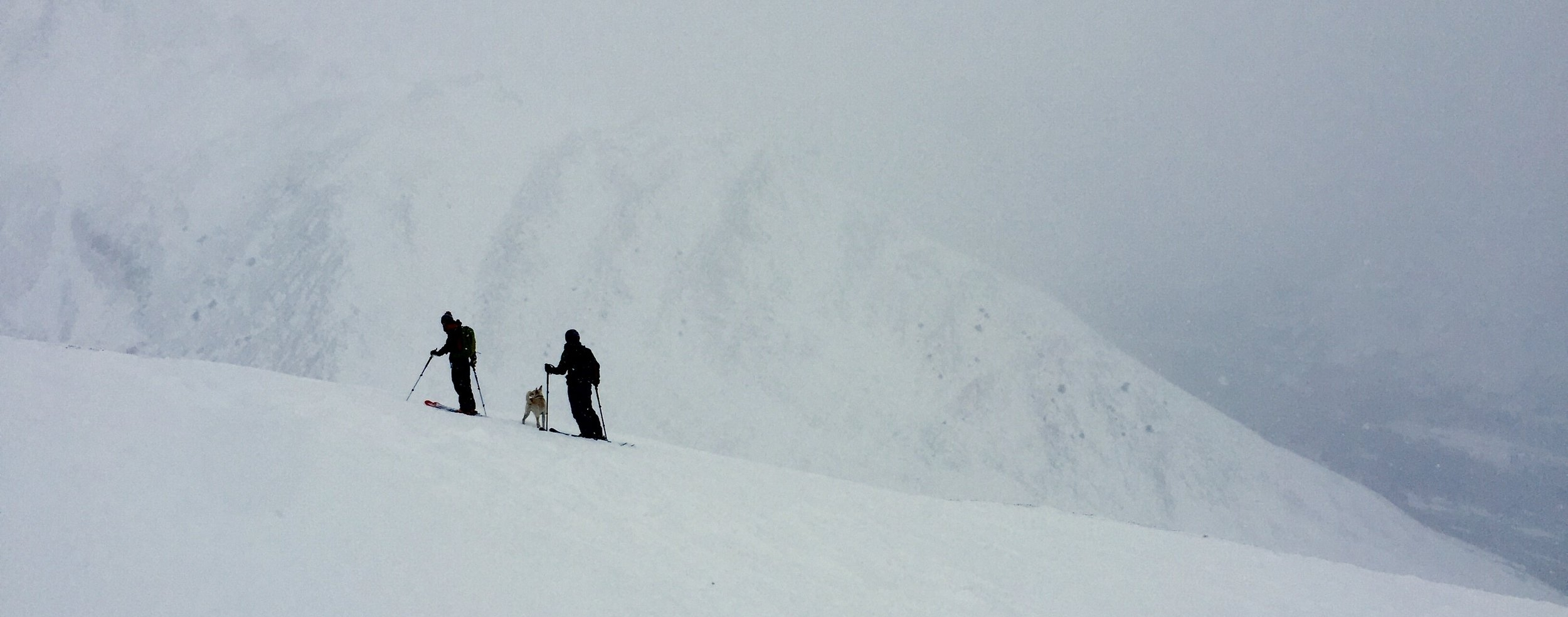 Enjoying a cloudy climb for some epic skiing. Shiro loves skiing almost at much as I do.