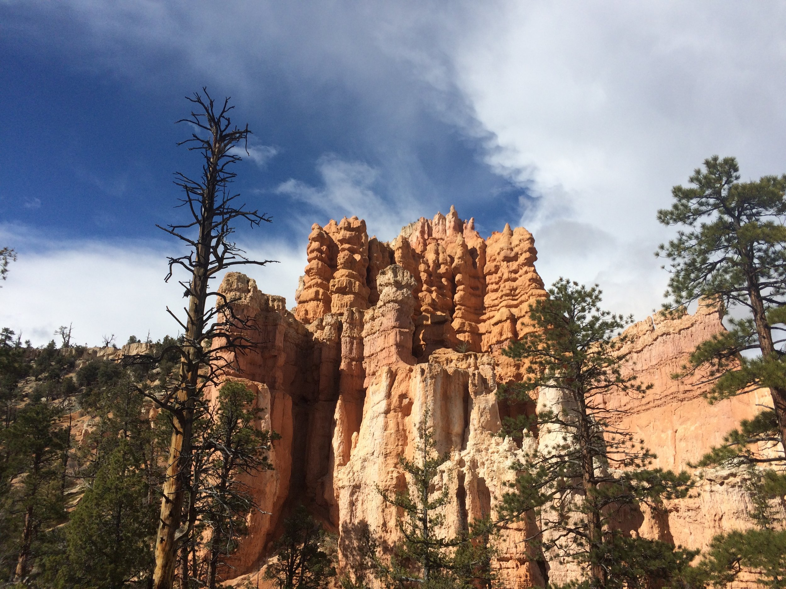 A distinct hoodoo formation