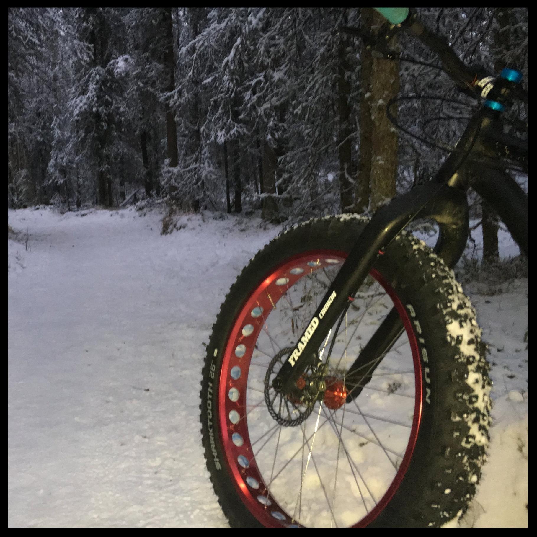 Studded Fat Bike Tire REview-Arisun Sharktooth