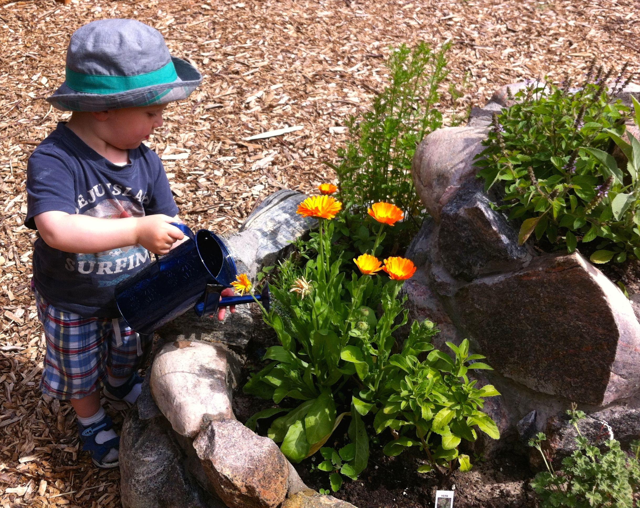 Teaching Gardens-11.jpg