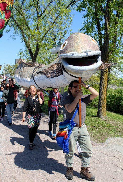 Eel Picture 2.jpg