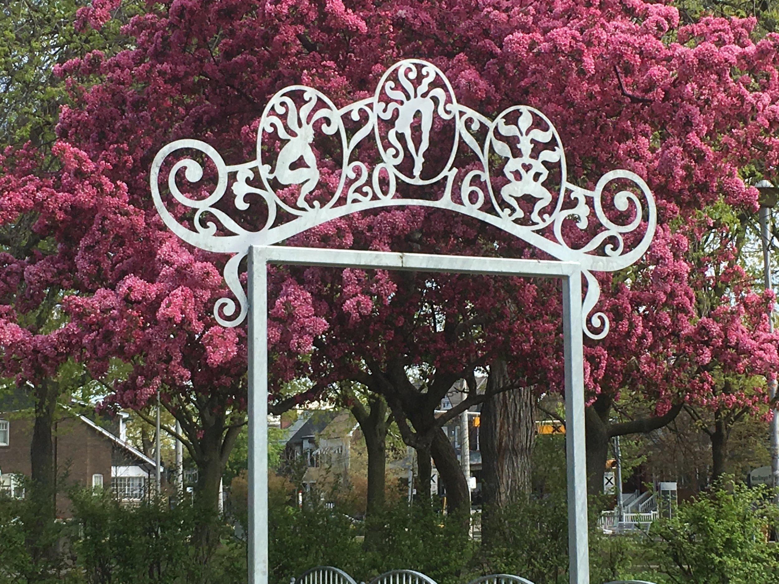 garden arch.jpeg