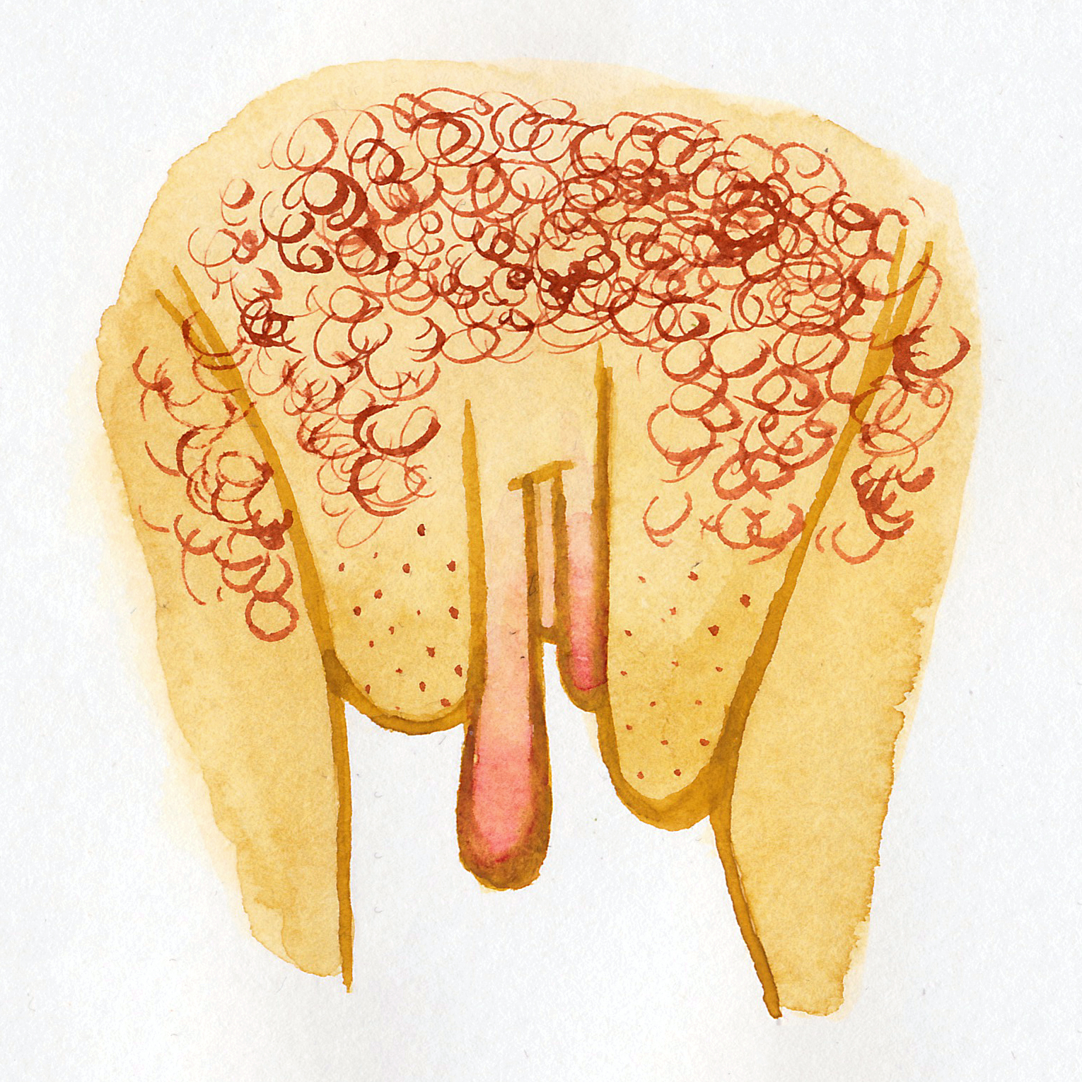 Vulva Gallery Yellow21.jpg