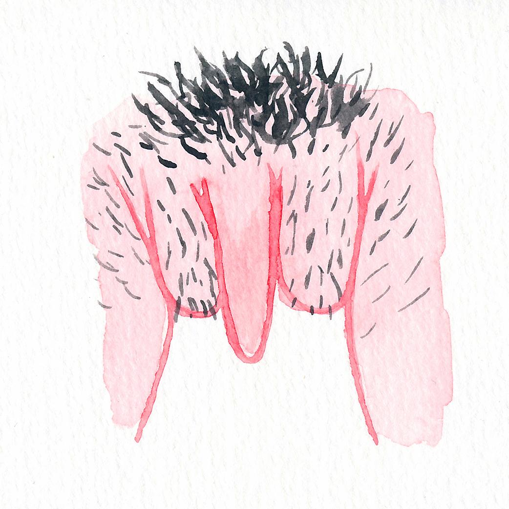 Vulva Gallery Pink8.jpg