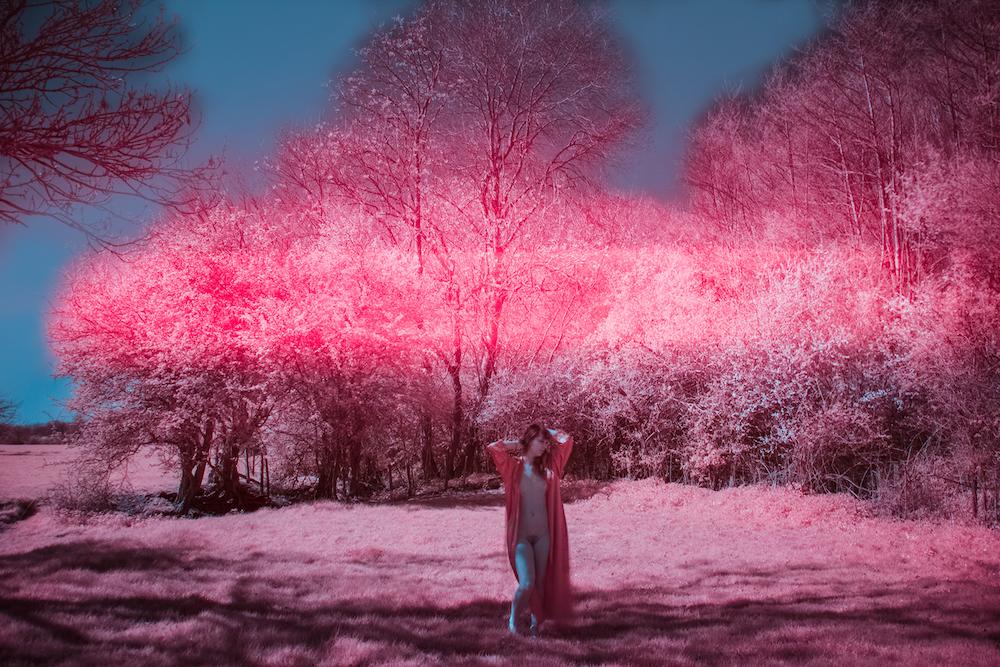 venusinfrared72dpi.jpg