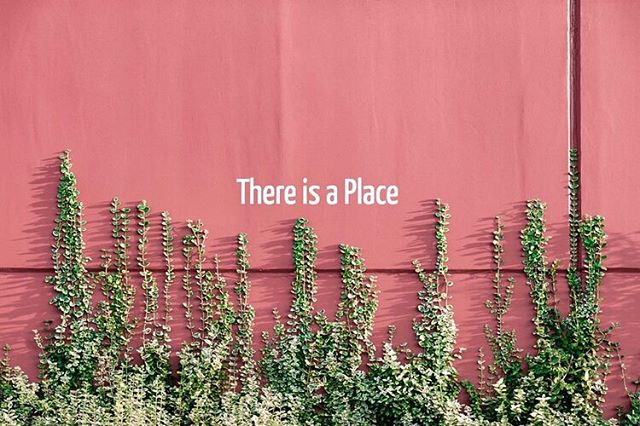 """There is a Place"" by @venenoxpatch up now! Happy Monday, read a poem and sip that coffee slowly (everything gets done eventually!) * * * #pinkthingsmag #writing #writersofinstagram #angrywomen #poetry #feministwriting #poetsofinstagram #soft #readinglist #feminist #writers #writingeveryday #dailypoem #featuredpoet #femalewriter #feministauthor #feministreading #montreal #nyc #losangeles #joandidion #magicalthinking #brooklyn"