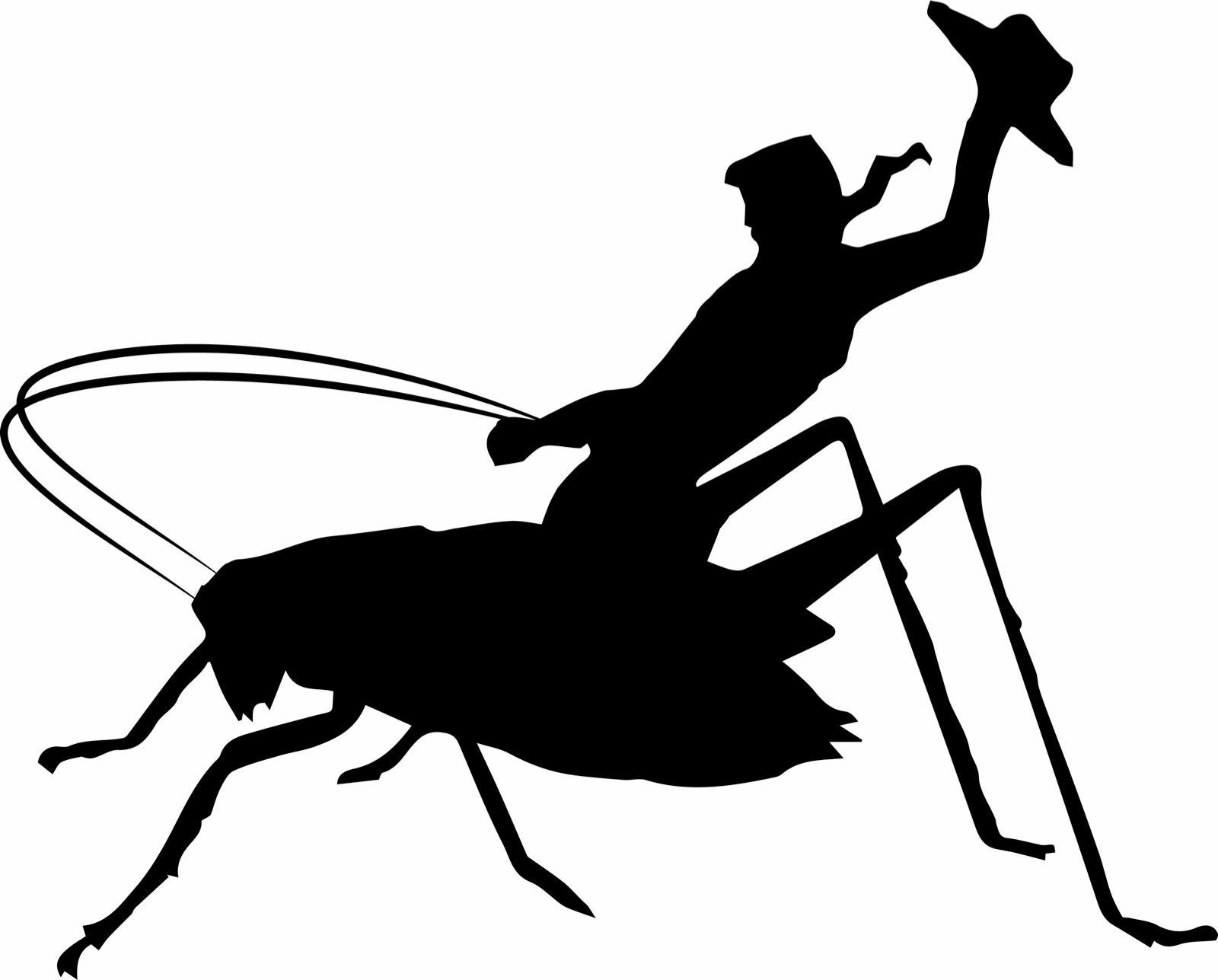 Cowboy Crickets