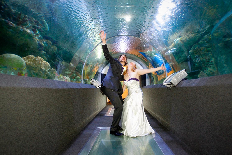 milwaukee-discovery-world-pier-wisconsin-wedding-ruthie-hauge-photography-50.jpg