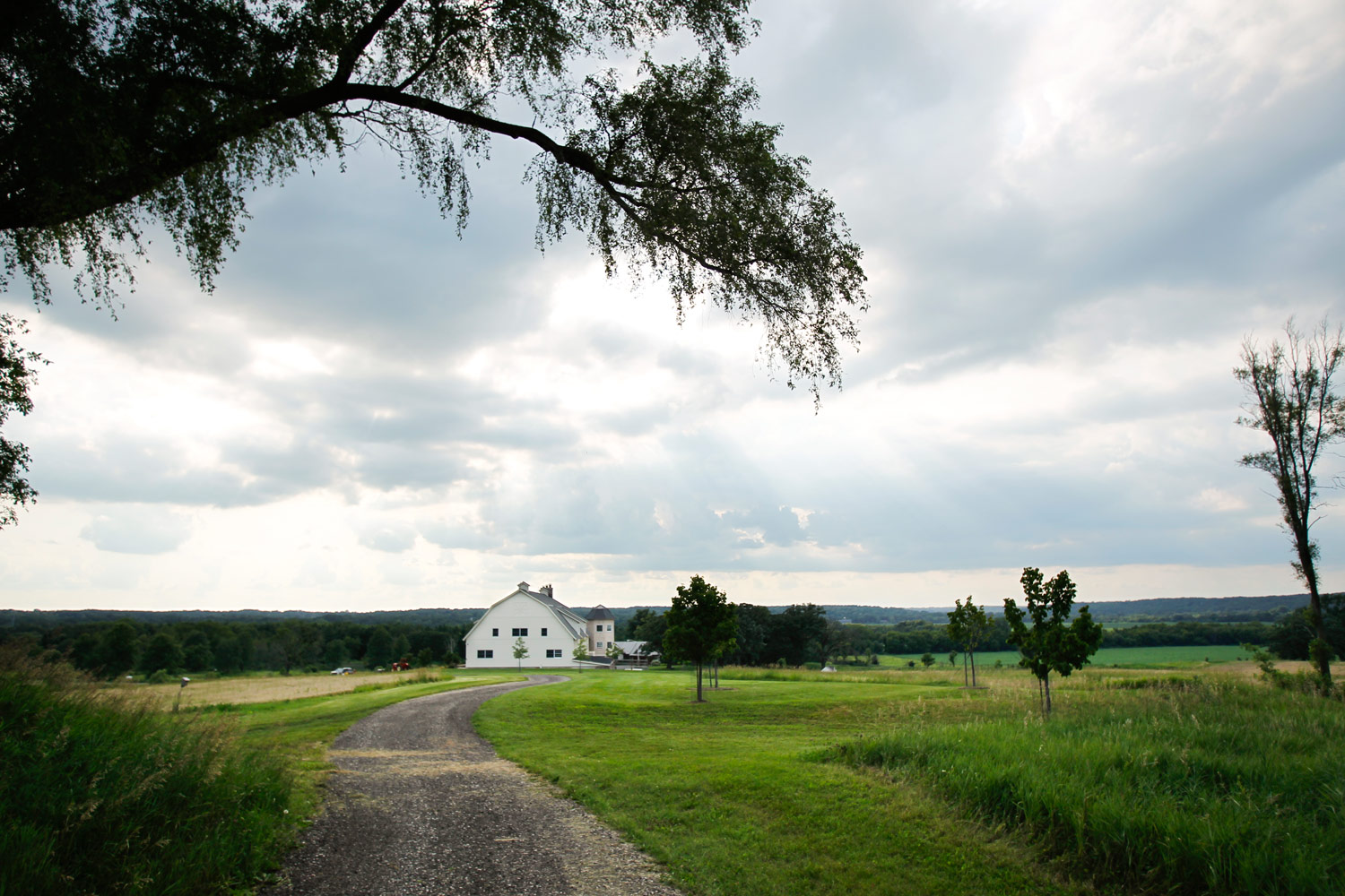 event-photographer-madison-wi-dane-county-gala-fundraiser-ruthie-hauge-photography-farm-to-table 01.jpg