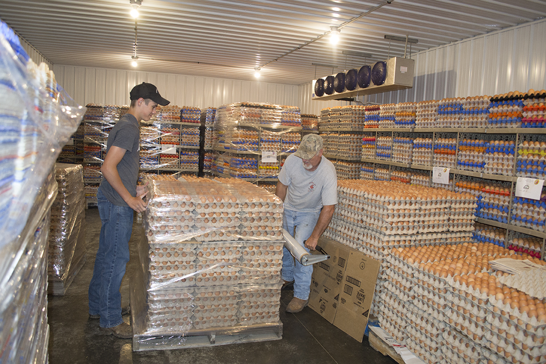 Larry Higgins and his nephew, Cody Kuttenkuler, wrap a pallet of eggs to be transported to The Food Bank.
