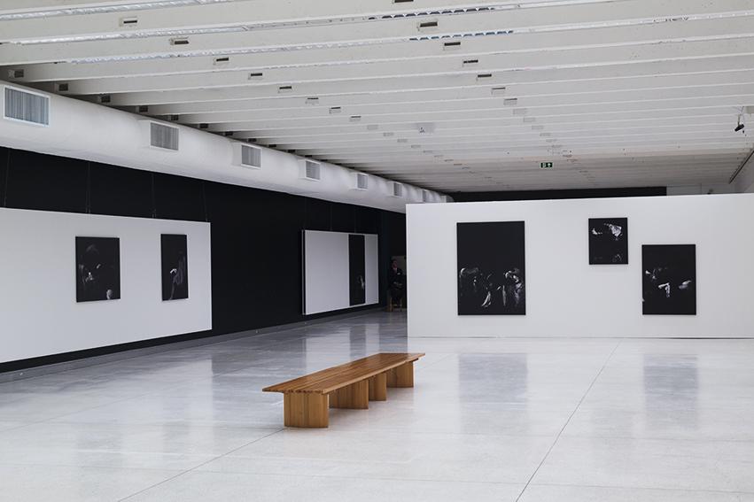 Exhibition View, Manoel Veiga