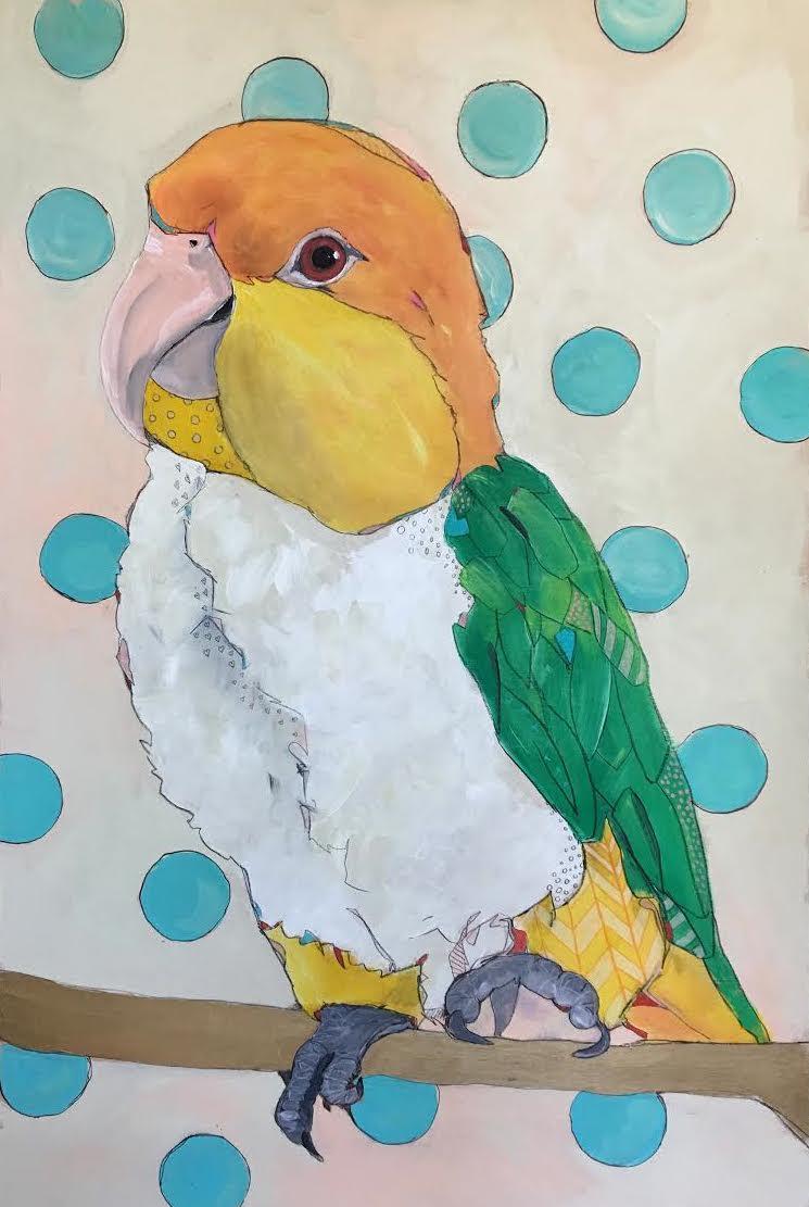 conure parrot with aqua dots.jpg