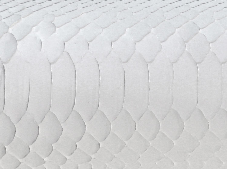 Springer 100 HRMM white snake mirror143 detail hires.jpg