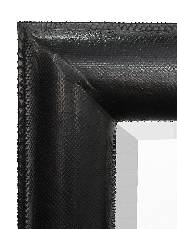 Springer 150 lrg blk cobra HRMM mirror122 detail1 hires.jpg