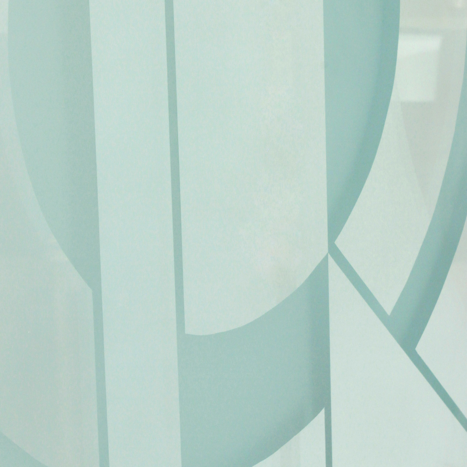 Shultz 85 etched 3 panel glass screen14 detail hires.jpg