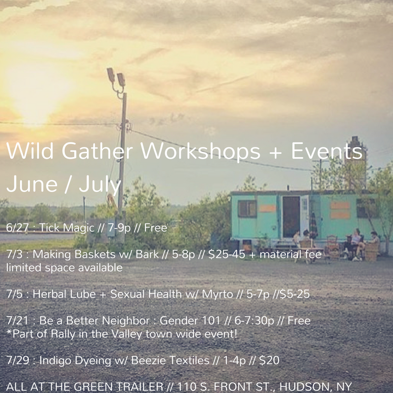 With Summer Solstice having arrived, we've been hard at work taking advantage of these long, sun filled days. While we're grateful to be tending our gardens, making medicine, wildcrafting, teaching and supporting our loved ones, we can't always be on TCB mode. So we've gotten together a juicy line-up of events and workshops for y'all to enjoy! Come take a break with us... We'll be sipping on some chill tea and taking time to be still, learn and take good care.  Up first we have  Tick Magic  on 6/27 from 7-9pm. This is a free event in collaboration with  Sarah Falkner Healing Arts . Tick Magic is a a gathering, a working, a container for facilitated collective magic. All folks are welcome no matter your personal histories or experience with tick related illness or magic.  In July, we have a few hands-on plant based workshops. First a  Making Baskets w/ Bark  workshop on 7/3, where folks will learn how to craft their own bark baskets to take home (limited space available so RSVPs are important!). Later in the month on 7/29 we have a drop-in  Indigo Dyeing  workshop hangout with Barrie of  Beezie Textiles , where you can bring your own cloth or garment to dye, or grab a hankie from Barrie!  We'll also be getting sexy and healthy with Myrto, our friend and local herbalist who will be faciliating an  Herbal Lube + Sexual Health class  on 7/5. In this class you'll learn about different herbs to use in making a water based lube, which can serve as an aphrodisiac, UTI/yeast preventive and support the overall health of your down there tissue states.  And lastly, in collaboration with  Rally in the Valley , a festival of art, education and action in support of Upper Hudson Planned Parenthood, we'll be offering this workshop on 7/21 :  Be a Better Neighbor: Gender 101.  As a culture, we are taking major strides towards breaking down the gender binary, one bathroom at a time. While we are grateful for this cultural movement towards compassionate ally ship for our queer and trans communities, we know that there is still a lot of work to be done on the ground. In this workshop we will break down gender identity, expression, and pronouns. We will provide tools towards creating safer spaces, gender literacy, and collective liberation for all. We encourage you to come with an open mind and open heart. No matter what your experience or understanding of gender is you're welcome here.  All workshops take place at Wild Gather's headquarters, The Green Trailer @ Basilica Hudson, 110 S. Front St. Hudson, NY.  To RSVP for any event, send along an email to  wildgather@gmail.com  and let us know which you're wanting to attend. Thanks so much, y'all! XO, Wild Gathe