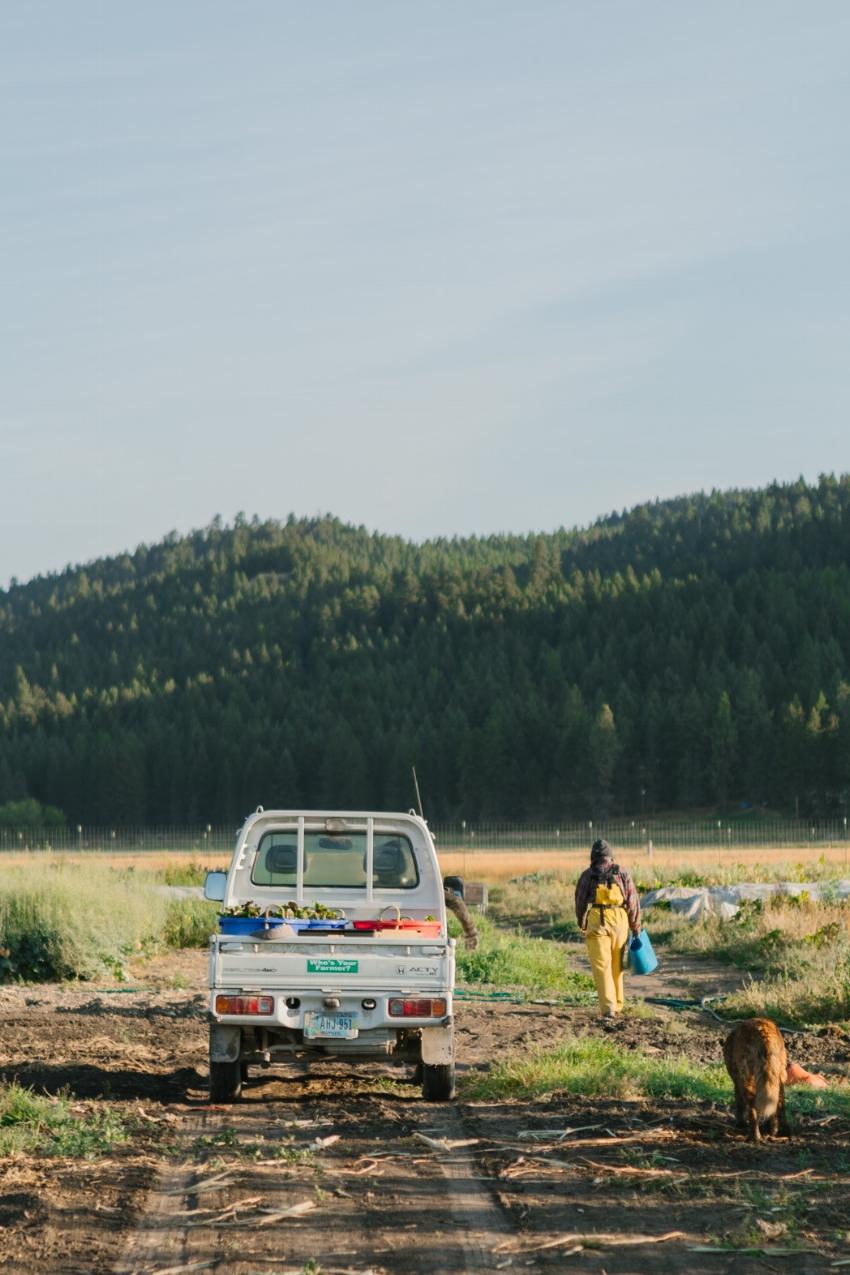 Two Bear Farm by Kimberley Hasselbrink.jpg