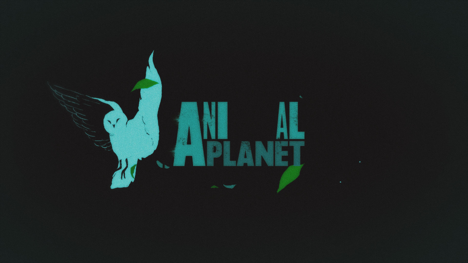ANIMAL PLANET REFRESH_00318.jpg