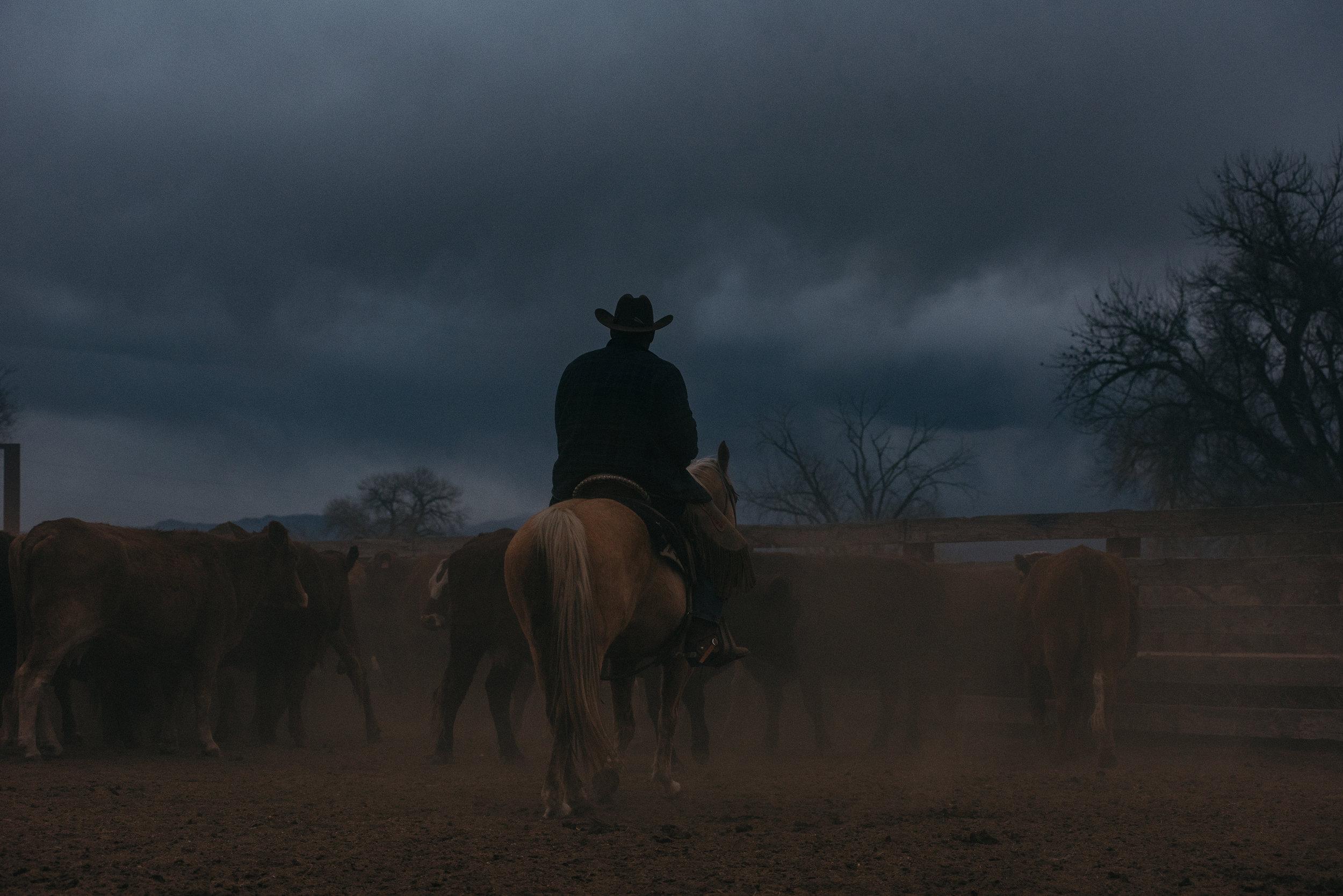 1.11.18 Chico Basin Ranch-13.jpg
