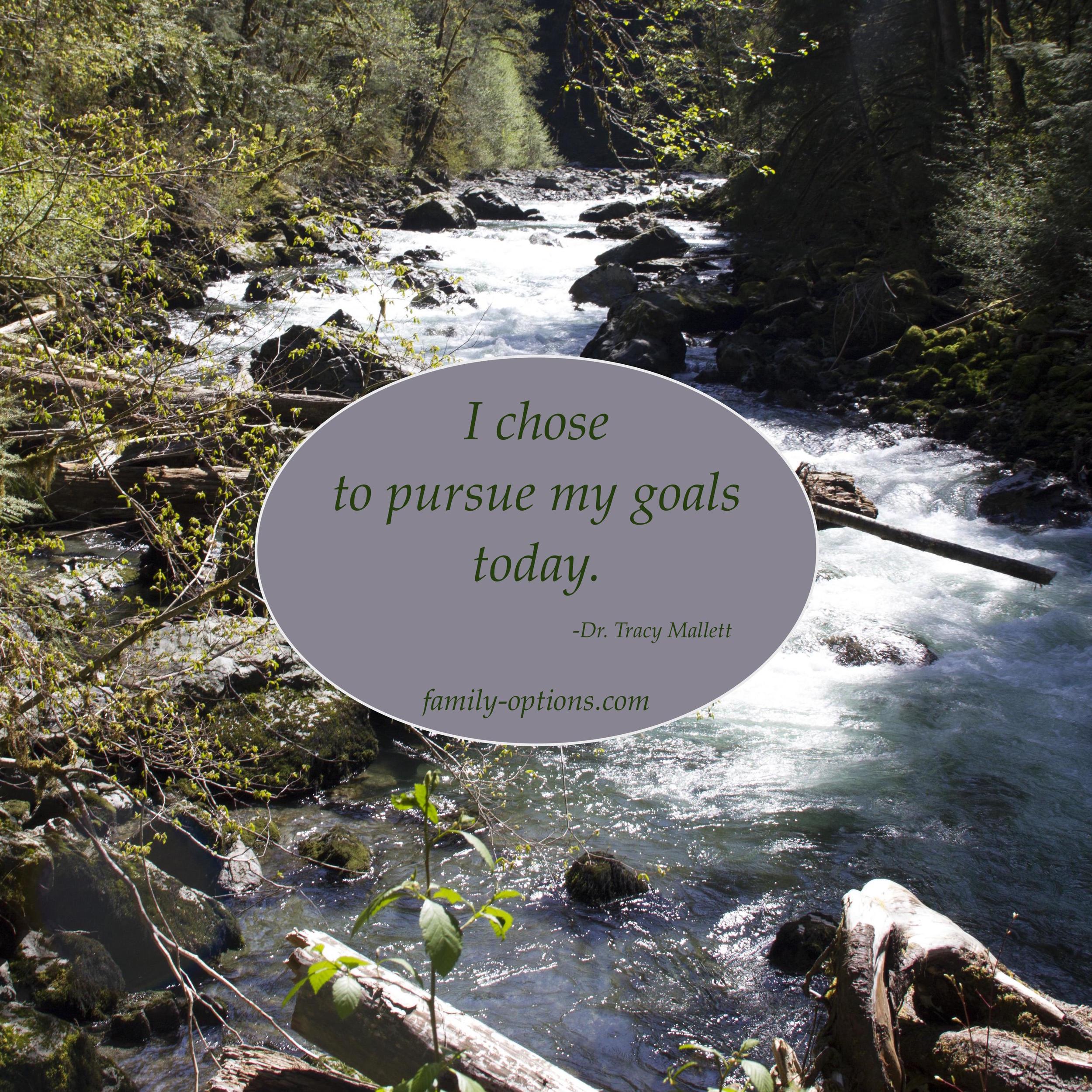 Pursuing goals