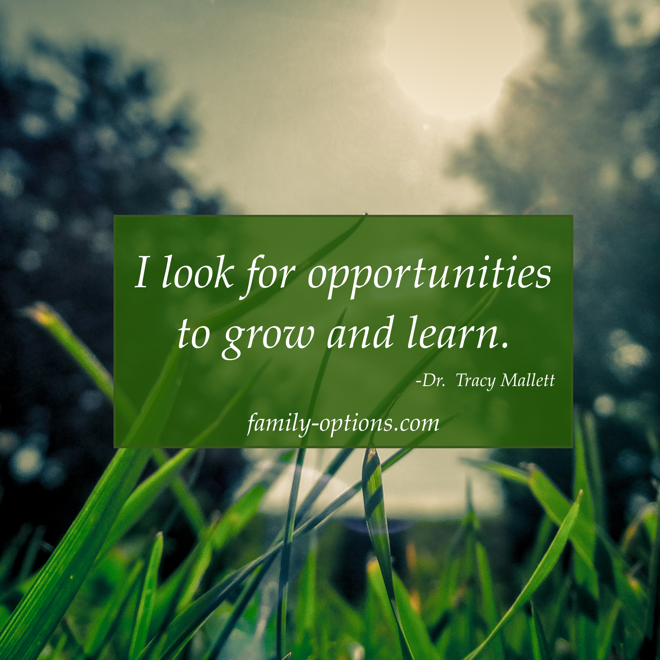 Learning to grow