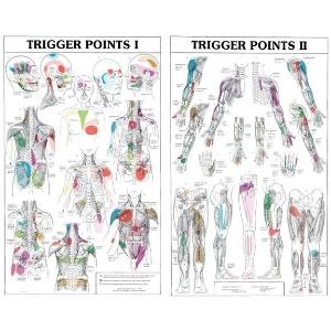 Trigger-Point-Medical-Massage