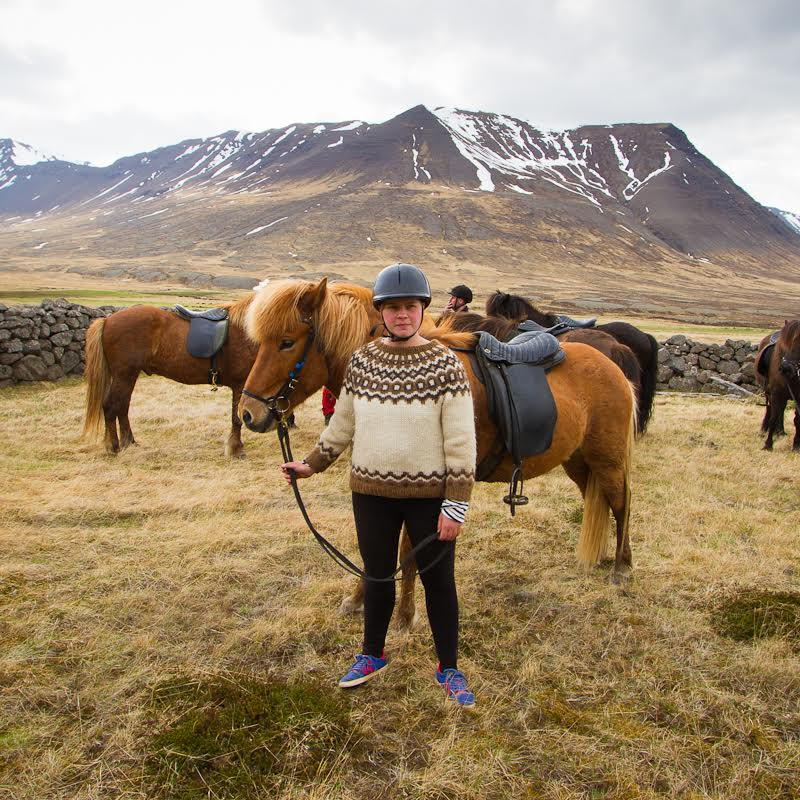 An Icelandic sweater to