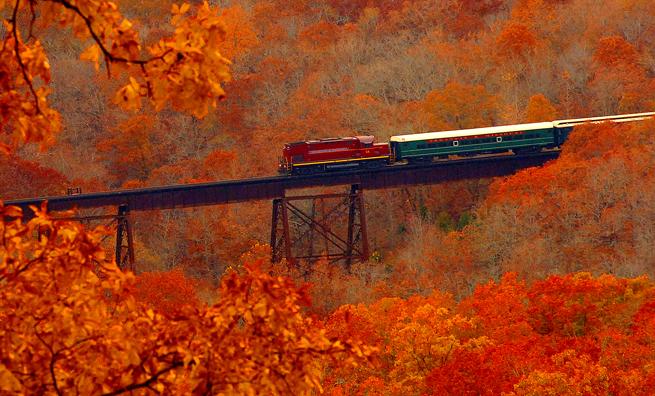 ARMOtrain-in-autumn.jpg