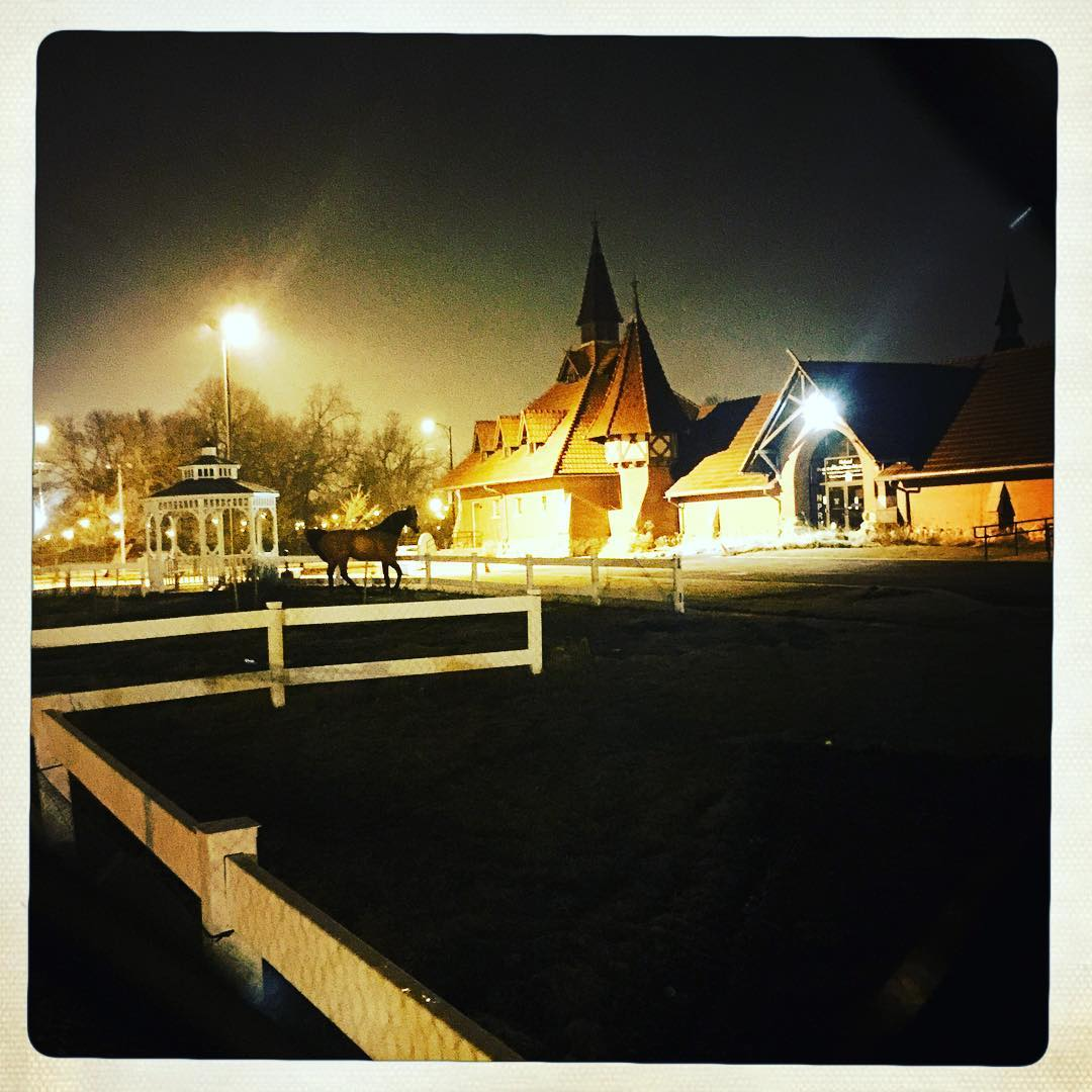 Day 60: stables.