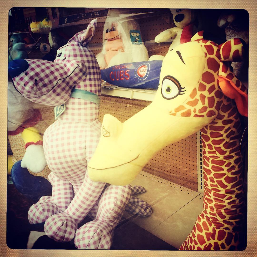 Day 73: We got your plaid Scooby and giraffe needs covered.
