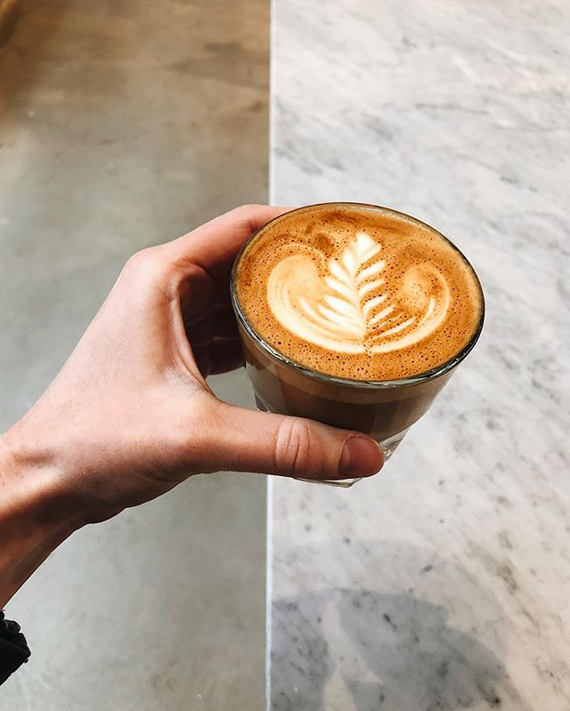 Reminiscing on this little cortado and the sweet barista who made it. @joslin07 wanted to kill me because I drank too much coffee on our first day in Denver and chatted up everyone. (People were alarmingly nice—I guess that's what happens when folks are happy. 😂) Currently at home in PA drinking the delicious beans I bought from this café. Tastes like cinnamon? Idk don't ask me the tasting notes, but I know it's good pickins. Happy Caturday! 🐱