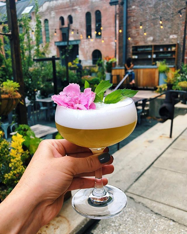 "Look at this lil number from @woodberrykitchen 😍🌸 I appreciate when restaurants and bars take the time/effort to craft thoughtful and beautiful non-alcoholic drinks. Just because you don't/can't drink doesn't mean you shouldn't get to be a part of the ritual. I love sitting down after a long day with a ""drink"" but that can have different meanings to each of us. Personally, I do drink alcohol but sometimes I simply don't want to or I need to drive home. Basically, it's great to see creative mocktails pop up on menus to include everyone. Cheers! 🥂"