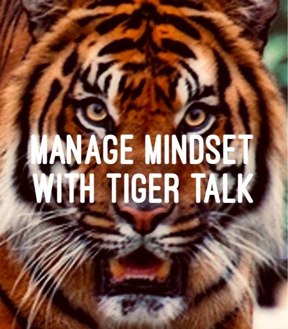 - Manage your mindset by committing vs. complaining. Trust you are worth the investment and push yourself.I like firm encouragement with humor. I call myself TIGER!