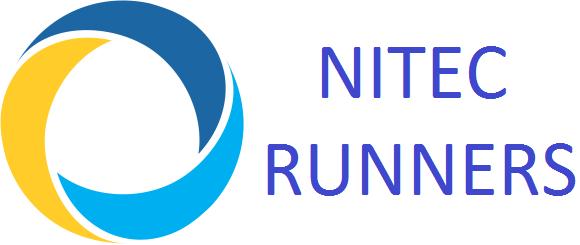 логотип нит.png