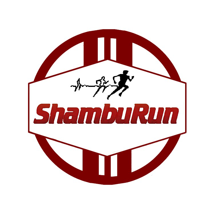 Лого Shanyrak Runners.jpg