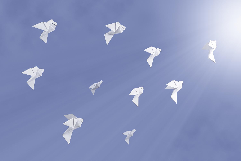 doves sharpened.jpg