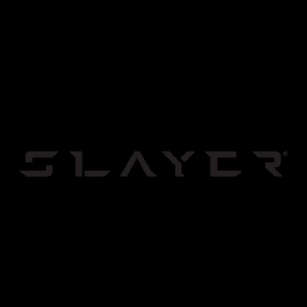 CTG Summit Houston Slayer.png