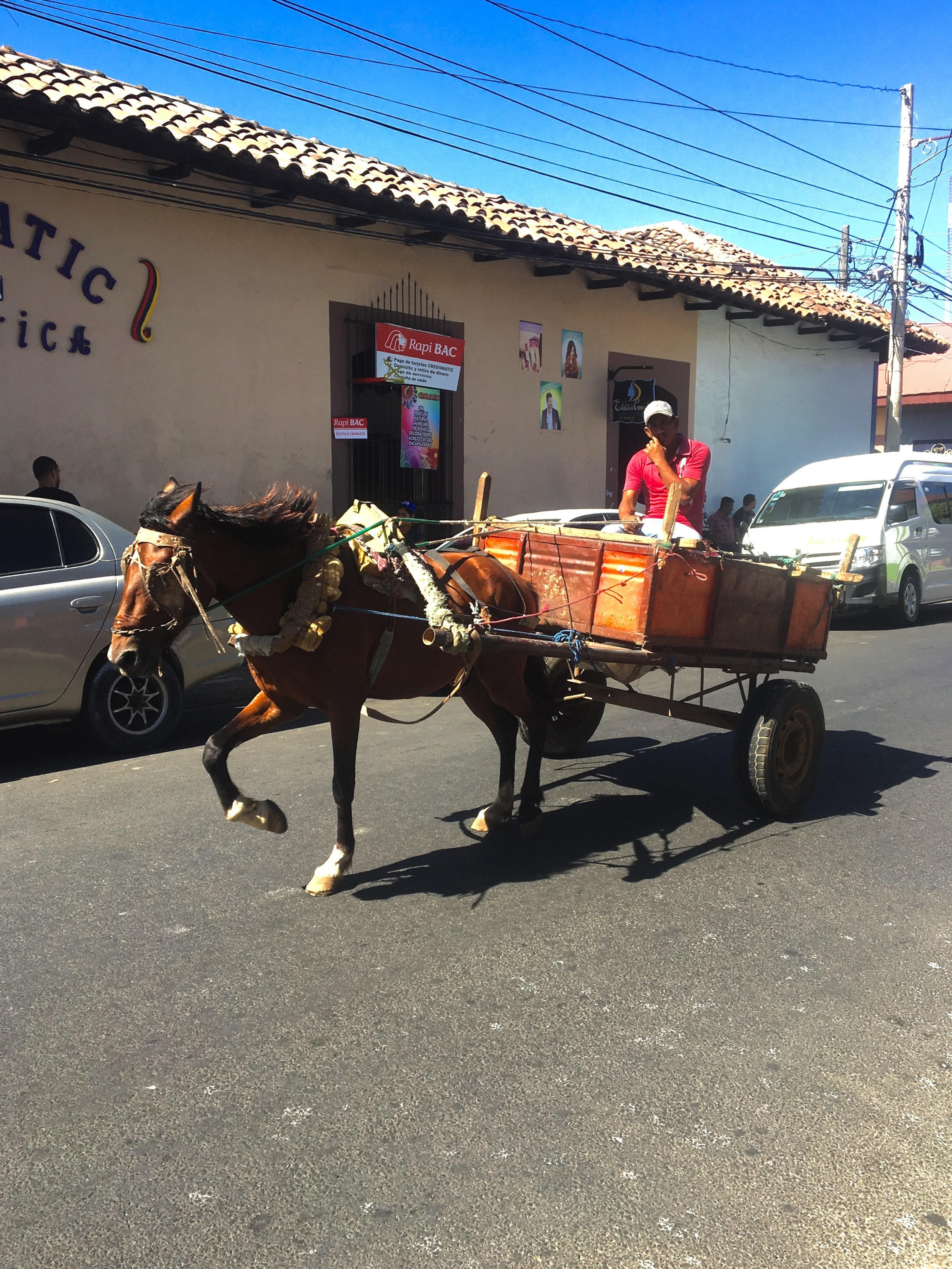 Horse buggy Photo by Ana.jpg
