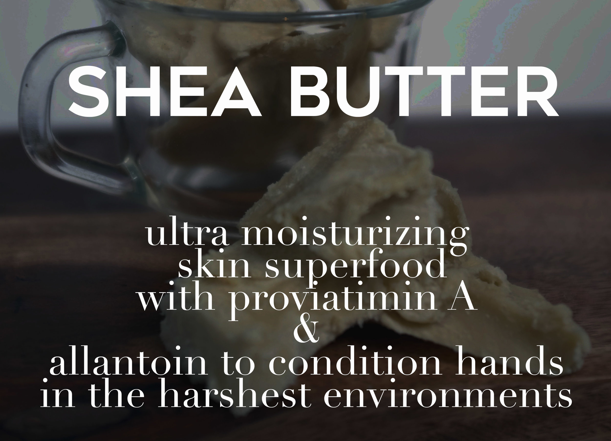 shea butter web photo.jpg