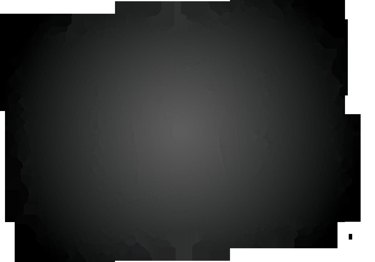 AMERICAN JUNKIE.png