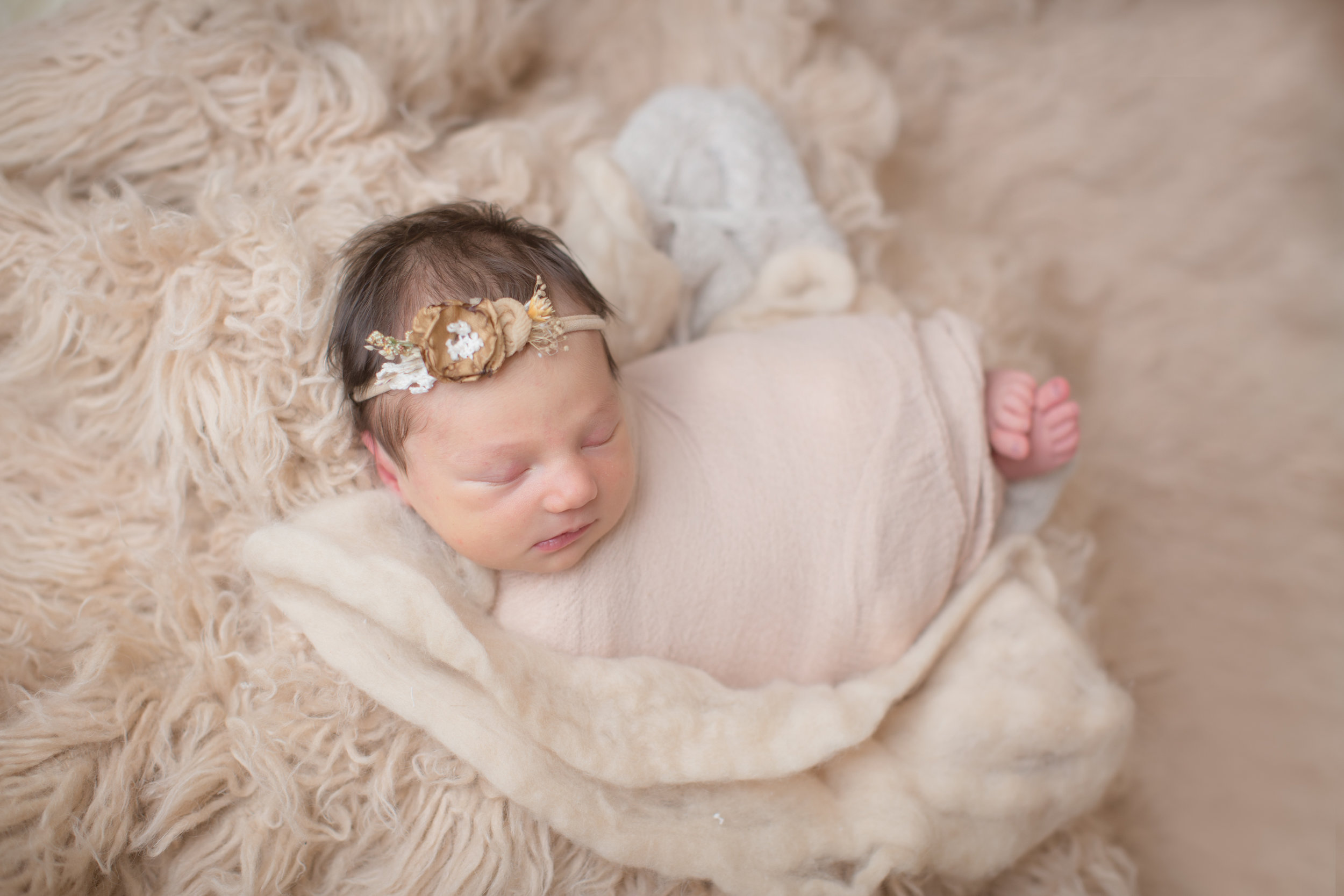 newborn baby laying on a neutral backdrop wrapped in tan with headband in studio session