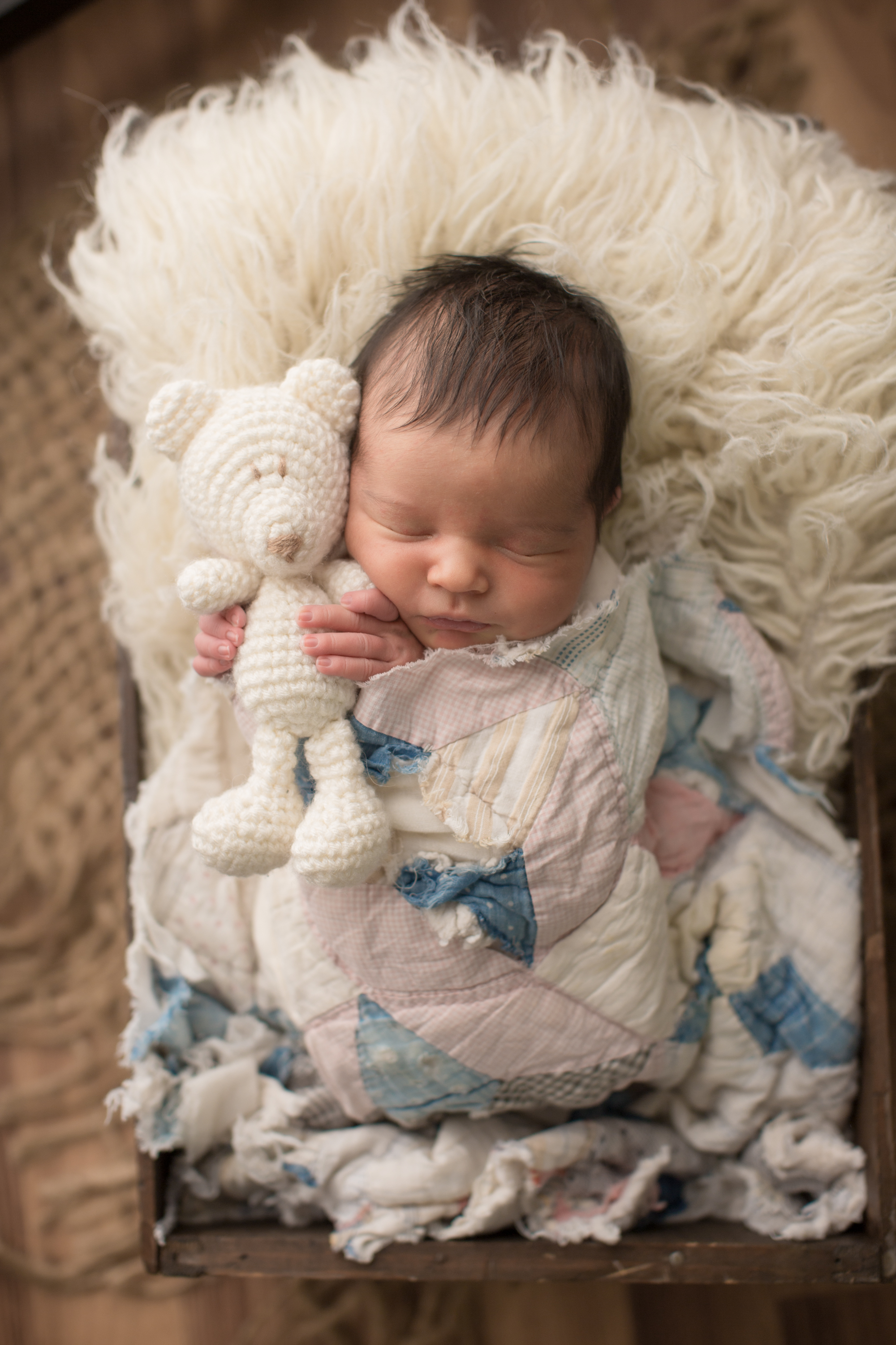 Baby girl in crate, baby girl in quilt, baby girl holding bear, grand blanc baby photos, grand blanc professional photographer