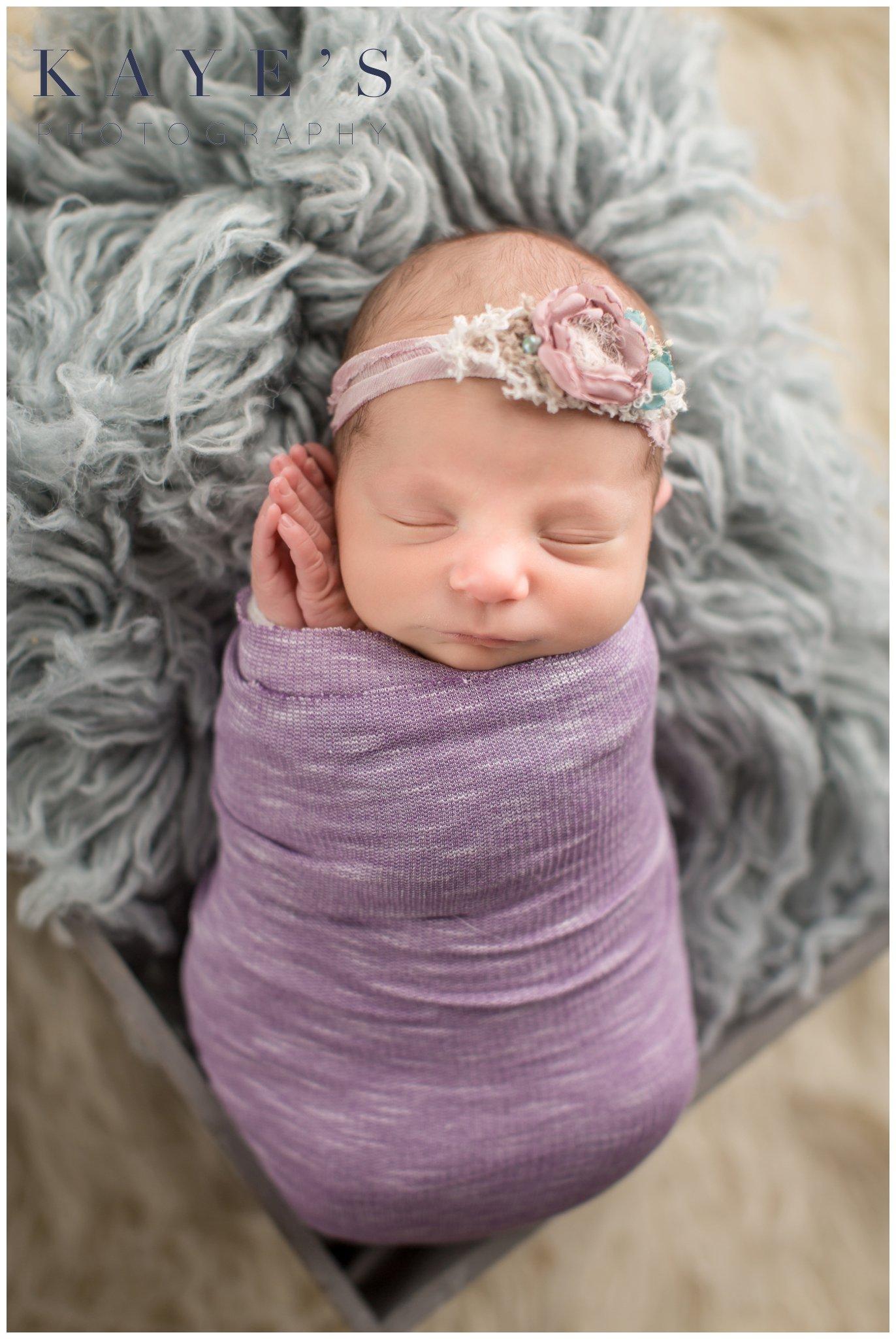 Celebrity newborn portraits of baby girl wearing purple wrap in basket with a headband