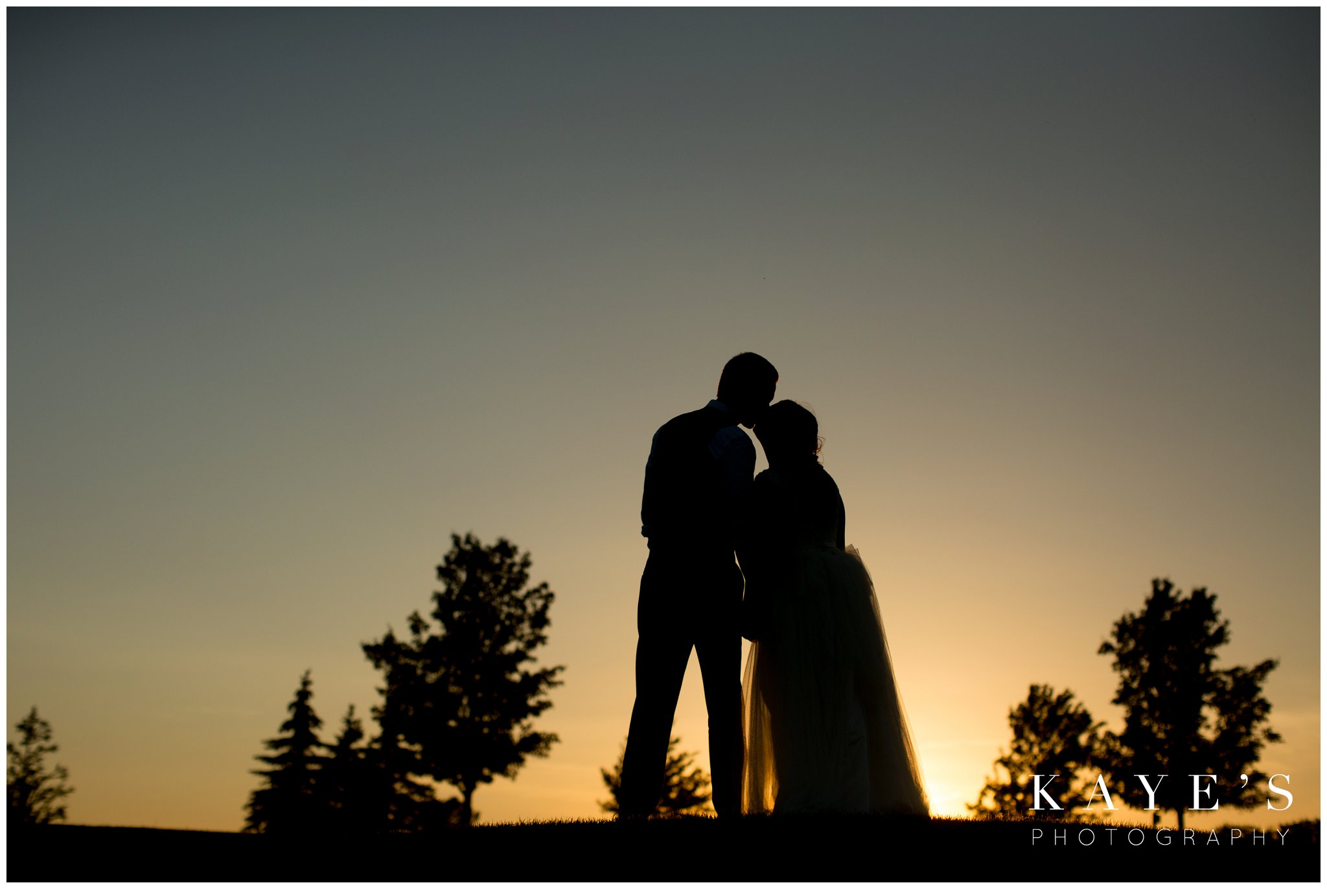 Kayes Photography- howell-michigan-wedding-photographer_0769.jpg