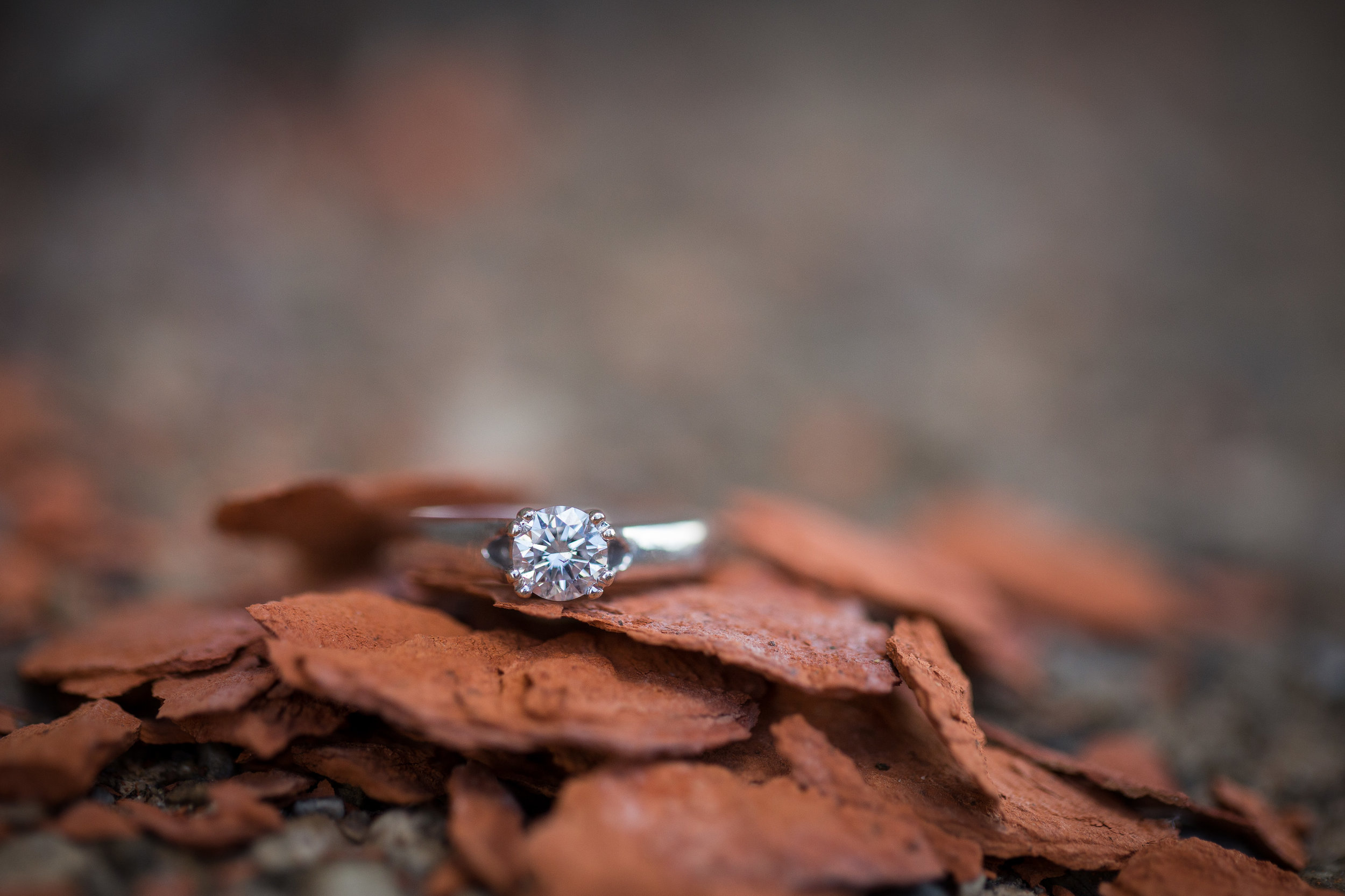 engagement ring shot during engagement photos
