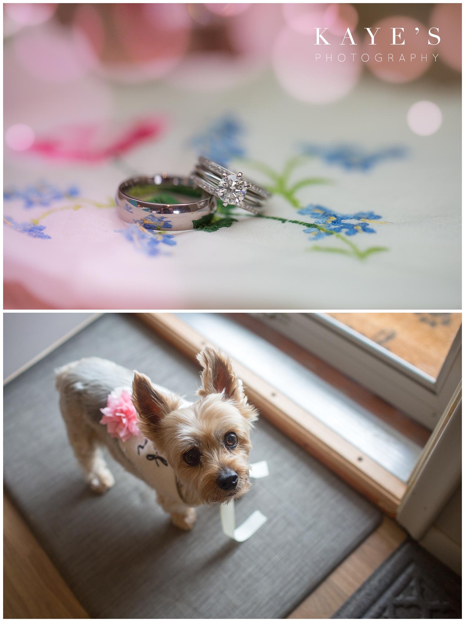 bride and groom wedding rings on hankerchief