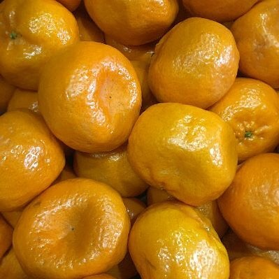 MANDARINS Imperial variety are still tasting great. The Afourer Mandarins will be coming soon. #mandarins #local #australiangrown #citrus #winter #fruit #sydney #chefs #sydneychefs #chefsofinstagram