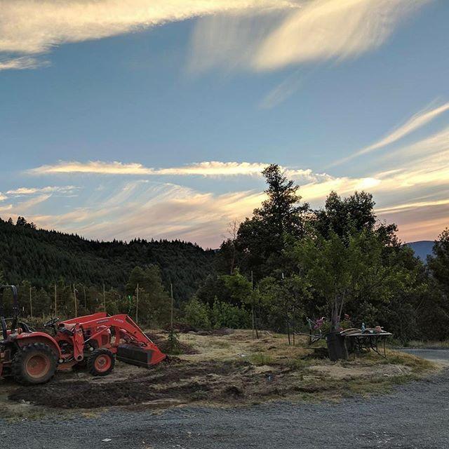 Hard work, easy livin' 🚜#farmlife #cannabisdaily #humboldtcounty #spireridgefarms #sunset #kubota #tractor #sungrown #cannabiscommunity #prop215 #getemintheground #weedstagram420 #workhardplayhard